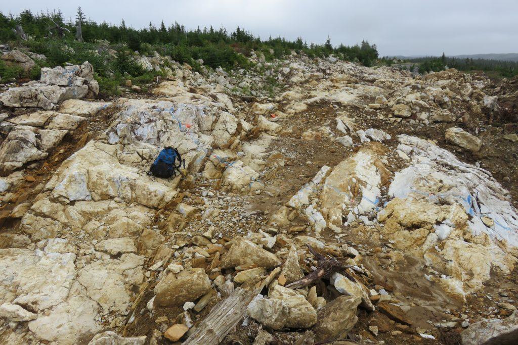 Mineralization samples